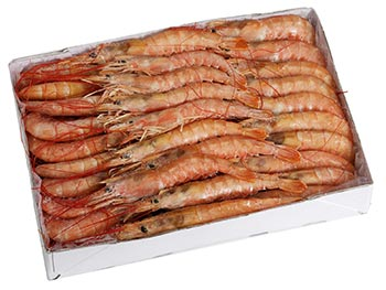 Argentine Red Shrimp Wild Oceans